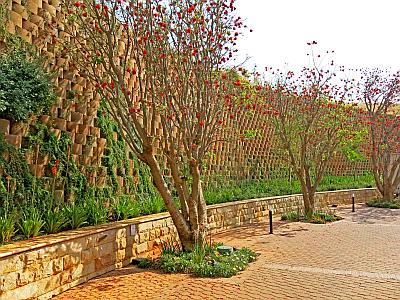 Functional landscaping TERRAFORCE